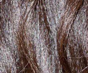 Soins aux huiles végétales pour cheveux secs