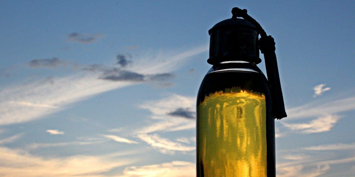 Bienfaits de l'huile d'argan pour les cheveux et la peau